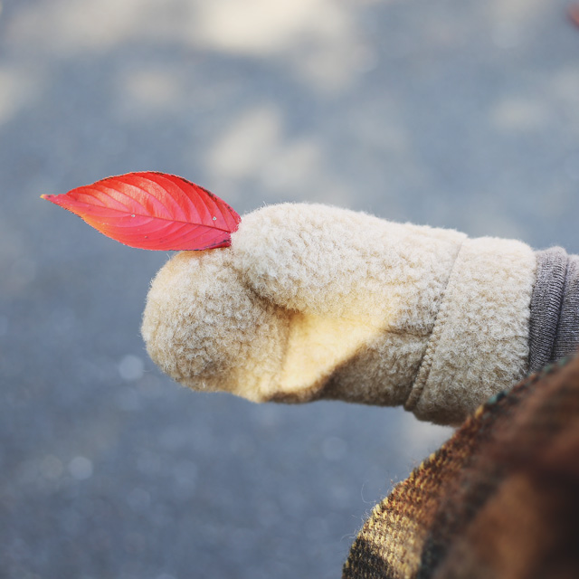ALWERO/アルベロ/ミトン 手袋(全3色)
